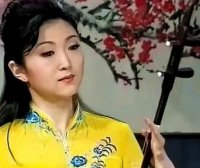 江南春色-二胡名曲